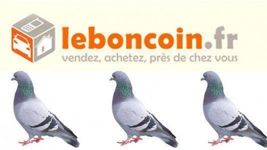 arnaque-leboncoin